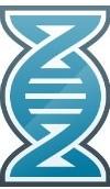 Zebra Mobility DNA