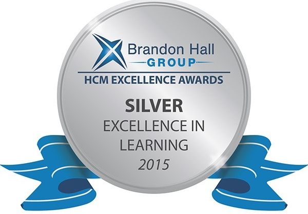 Excellence in Service Award in Silver