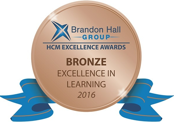 Excellence in Service Award in Bronze