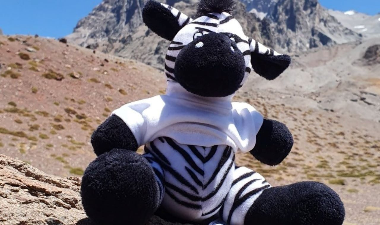 Zippy, the Zebra mascot