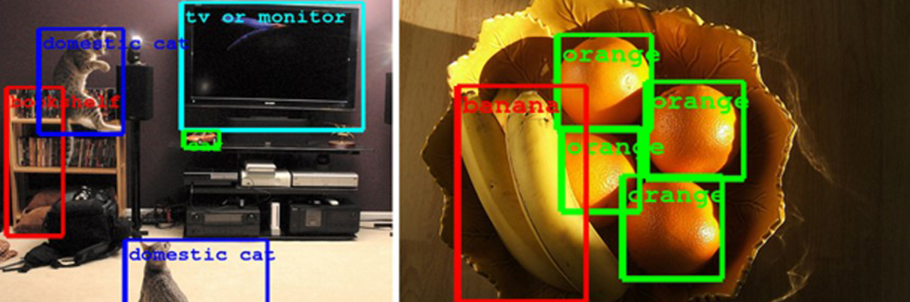 Example of computer vision looking at various items including orange and bananas along with televisions and a cat