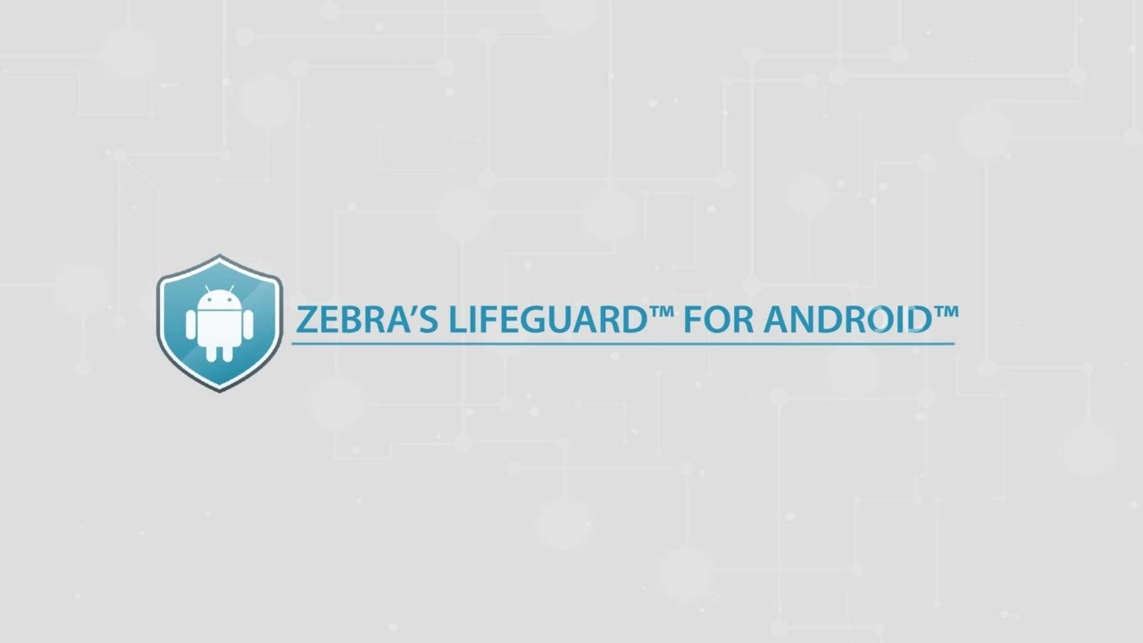 LifeGuard for Androidのビデオのキャプチャ画面