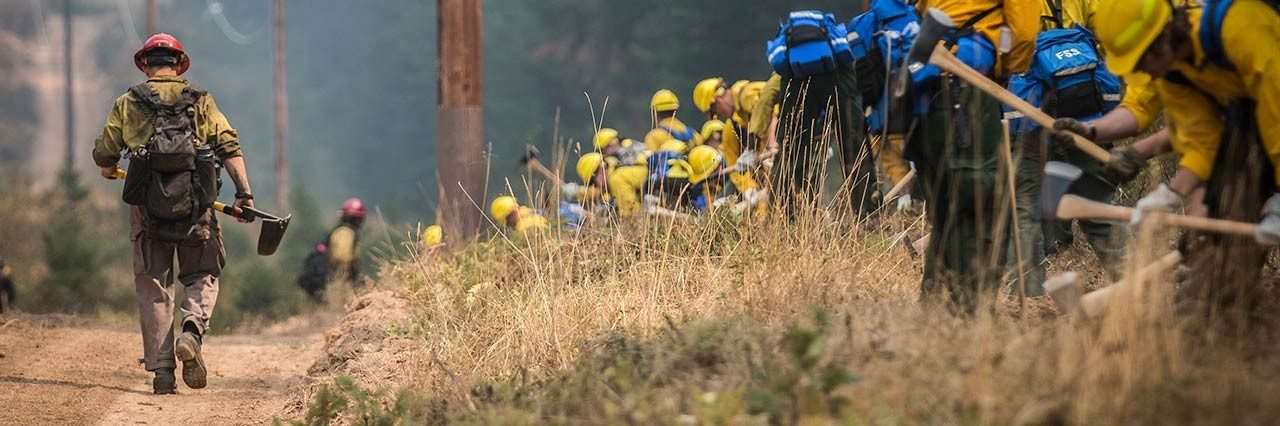 firemen working on forest fire