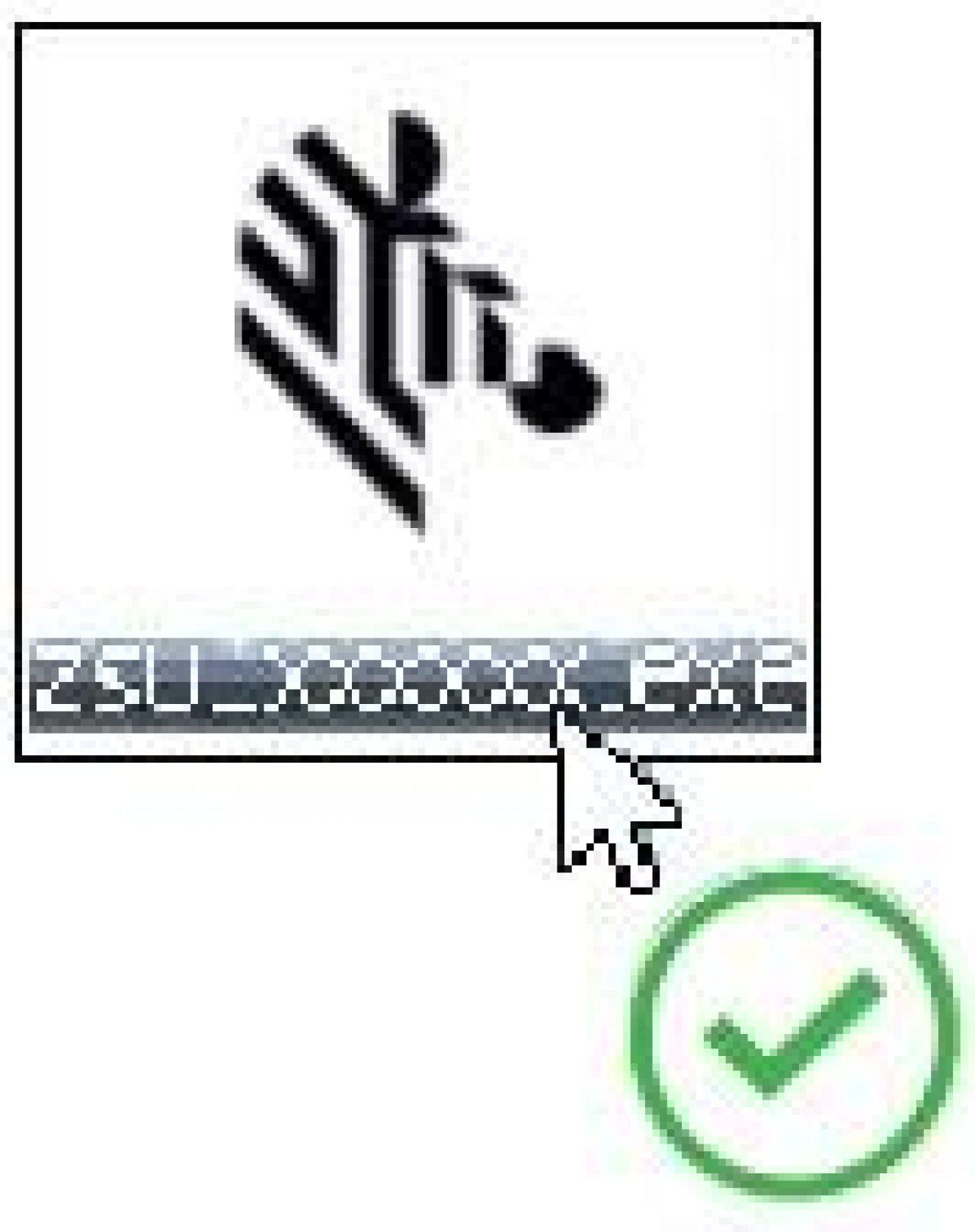 Schermata del file eseguibile dell'utilità di installazione di zebra